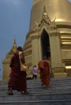 Monks on their way to the Chedi. Grand Palace, Bangkok.